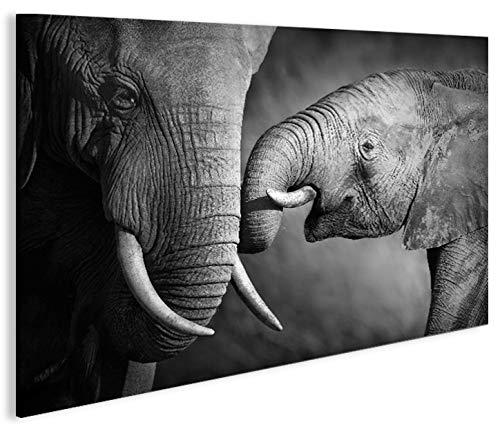 Imagen imágenes en lienzo Elefantes V21p elefante Baby XXL Póster Lienzo Cuadro...