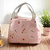 Lunch Bag, Oxford-Stoff Compact Lunch Box Bag Einkaufstasche für Frauen, Männer, Erwachsene und Kinder