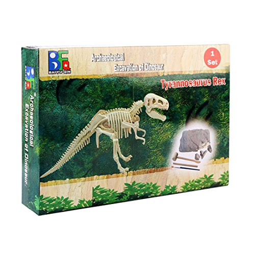 Jo332Bertram Mineral Ausgrabungs Spielzeug Kit Dinosaurier Fossil Dig Discovery Spielzeug für Kinder Lernen - ()