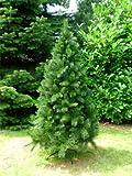 TOP Weihnachtsbaum kuenstlich 180cm - 4
