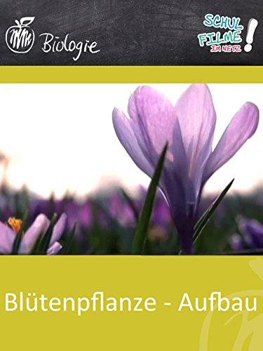 Blütenpflanze - Aufbau - Schulfilm Biologie - Erde Zu Blättern