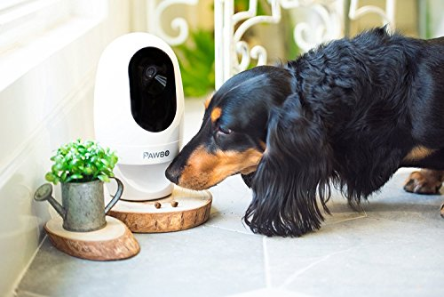 Pawbo Life Wi-Fi Pet Camera and Treat Dispenser 4