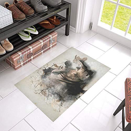 LIS HOME Rhino kommt aus der Wand-rutschfesten Tür-Matten-Inneneinrichtung heraus, kühles Eingangs-Fußmatten-Eingangs-Matten-Inneneinrichtungen