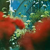 Pulled Apart By Horses: The Haze (Audio CD)