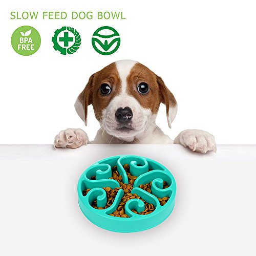 Reisenäpfe Hundenapf Katzennapf Langsam Essen Fressnapf, Spaß Interaktive Feeder Schüssel und Wasser Trinken Bowl Für Hund, Blüte Blau (Trinken Hund Wasser Schüssel Langsam)