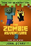 Choose Your Own Minecraft Story: The Zombie Adventure 3: Plunge into the Nether