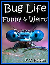 Bug Life Funny & Weird Insect Animals - Learn with Amazing Photos and Fun Facts About Bugs and Spiders (Funny & Weird Animals Series Book 4)