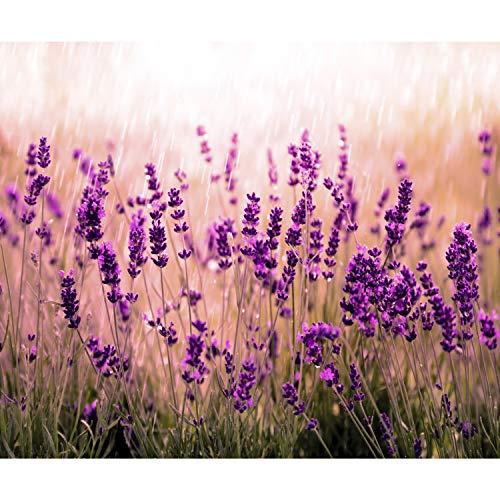 decomonkeyFototapete Blumen Lavendel 250x175 cm XL Design Tapete Fototapeten Vlies Tapeten Vliestapete Wandtapete moderne Wand Schlafzimmer Wohnzimmer rosa violett FOB0059a5XL - Lavendel Samt