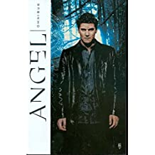 Angel Omnibus by Peter David (2008-11-18)