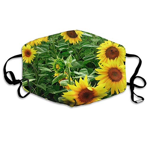 HUSDFS Mouth Masks Yellow Sunflower Flower Field Mouth Mask Unisex Dust Protecting Mask Reusable Mask for Men and Women