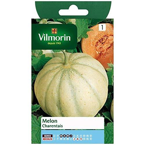 bio Potimaron Other Plants, Seeds & Bulbs 15 Graines Semences Potimarron Rouge Seeds Produit En France