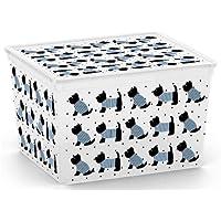 Carrefour 8419100 Caja de almacenaje Rectangular De plástico - Cajas de almacenaje (Caja de almacenaje