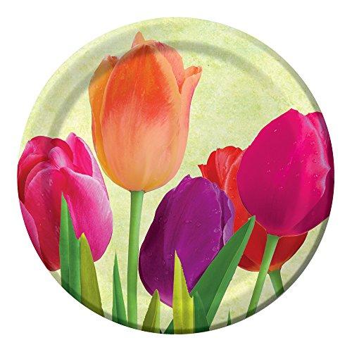 Unbekannt Creative Converting 8Zählen stabile Stil Papier Spring in Bloom Lunch Teller, 17,8cm Pink/Koralle/Violett/Grün