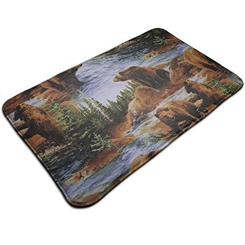 y Bears Grizzlies Wildlife Forest Animals Kitchen Carpet Rug Door Mat Rug for Bathroom Outdoor Porch Laundry Living 19.5