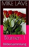 Blumen 1: Bildersammlung (German Edition)