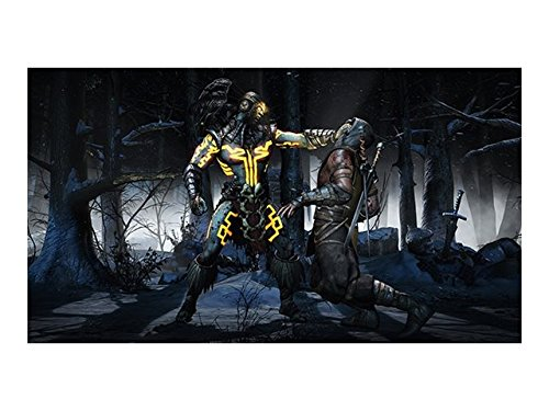 Warner Bros Mortal Kombat X, PC