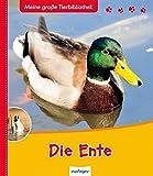 Die Ente: Meine große Tierbibliothek