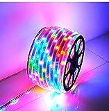 GreenSun LED Lighting 20M Stripe, Bunt Lichterkette, RGB Band, 2835 SMD Streifen, IP65 Lichtband, Pflaumenblüte Lichtleiste, Bänder Lichtschlauch