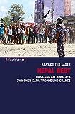 Nepal bebt: Das Land am Himalaya zwischen Katastrophe und Chance - Hans Dieter Sauer