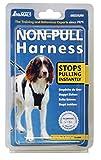 Company of Animals Hundegeschirr, gegen Ziehen, für mittelgroße Hunde, GrößeM