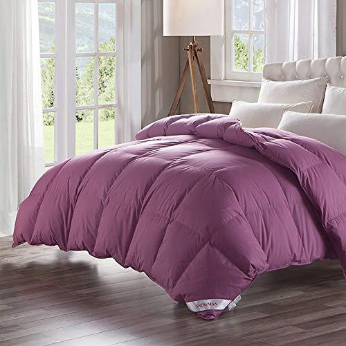 Luxuriöse 100% Gänsedaunen Tröster Bettdecke-Solide Baumwolle Shell Lila, baumwolle, violett, Twin(68*90) - Solide Tröster Set