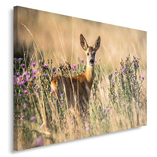 Feeby. Wandbild - 1 Teilig - 50x70 cm, Leinwand Bild Leinwandbilder Bilder Wandbilder Kunstdruck, REH, NATUR, BRAUN Natur Rehe