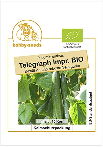 Bobby-Seeds BIO-Gurkensamen Telegraph Improved Portion