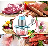 HomeFast Meat Grinders Electric Food Processor, Multipurpose Smart Kitchen Food Chopper Vegetable Fruit Cutter Onion Slicer Dicer, Blender and Mincer, Glass Bowl