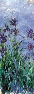 International Publishing 0802N16028b-Iris mauves, clásica Puzzle