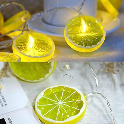 DOLDOA Zitrone Batterie-Kasten Lichterkette für Haus, Hochzeit, Weihnachten, Erntedankfest (20er LED – Länge: 2M, Gelb)