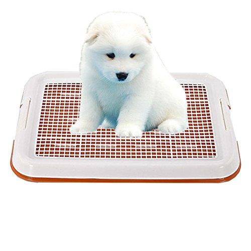 GreeSuit Animal-WC inodoro perros bandeja sostenedor del cojín de malla del entrenamiento...