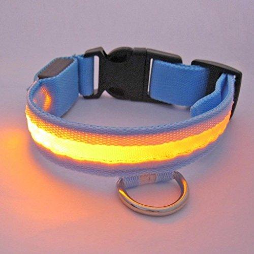 Bild von: Lesypet reg; LED-Licht blinkt Hundewelpen Haustier Sicherheitshalsband Nylon Verstellbare Breite 2,5 cm (Rot, Gelb, Blau, Gruen, Orange, Pink) & (Small, Medium, Large, Extra-Large)