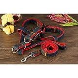 Tery niedlich Cowboy Haustier Hund Doggy Seil Leine Seil Hund Leine für Pet Supplies (M)