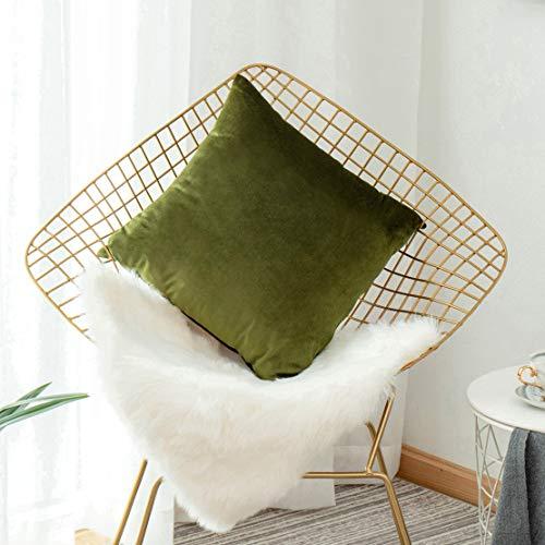 Casual Avocado (Home Bright Samt Dekorativer Überwurf-Kissenbezug für Sofa, Couch Stuhl Bett Casual 1 Pack, 18