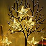 Wankd 10 LEDs Guirlande lumineuse Blanc Chaud, 1.5M guirlande lumineuse pile, bande lumière liège Guirlande Lumineuse Liège Lampes pour DIY Maison Decoration Mariage Soirée, Coquille