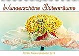 Wunderschöne Blütenträume (Wandkalender 2019 DIN A2 quer): Florale Fotokunstbilder von wunderschönen Blumen und Blüten (Monatskalender, 14 Seiten ) (CALVENDO Natur)