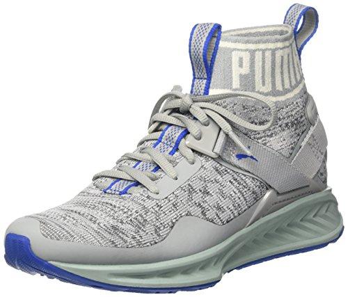 Puma Ignite Evoknit, Chaussures de Running Compétition Mixte Adulte Gris (Quarry-asphalt-lapis Blue)