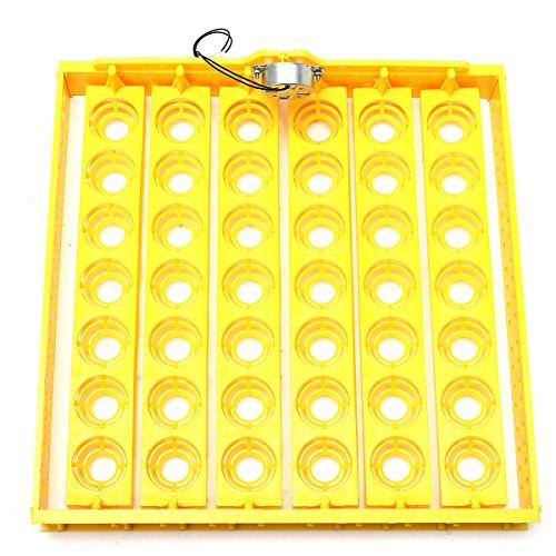 ChaRLes 42 Position 220V Eggs Turner Automatic Chicken Quail Geflügel Geflügel Inkubator Tray