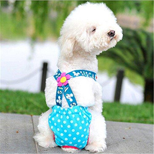 Zrong Weibliche Haustier Hund Kleidung Hose Sanitär Tupfen Pant Panty Windel Zufällige Farbe -