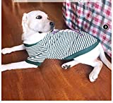 Big Dog Clothes Medium-Sized Large Dog Spring And Autumn Thin Section [Beetle Green] Tide Brand Striped Shirt M: Bust 40-45Cm