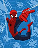 Maxi & Mini-Spiderman Plaid Decke Bett Coral 120x