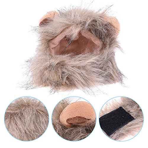 Dress Für Halloween Up (WIDEN Haustier Katze Hund Kostüm Löwe Mähne Perücke Cosplay Halloween Dress up mit Ohren Perücke Hut für Katze)