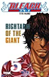 Bleach - Tome 05: Rightarm of the Giant (Shônen)