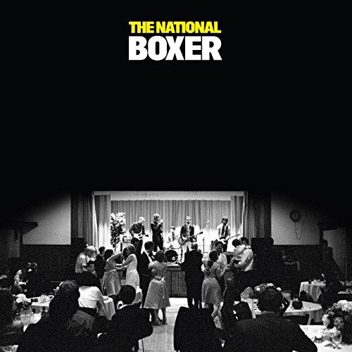 Boxer -