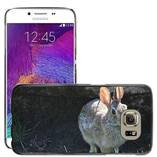 gogomobile Hot Style Handy PC Hartschalen-Schutzhülle Cover//m00118391Kaninchen Bunny Hase Tier Ostern//Samsung Galaxy S6(passt nicht für (Ostern Passt)