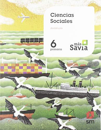 Ciencias sociales 6 Primaria Key Concepts Mas Savia Andalucía