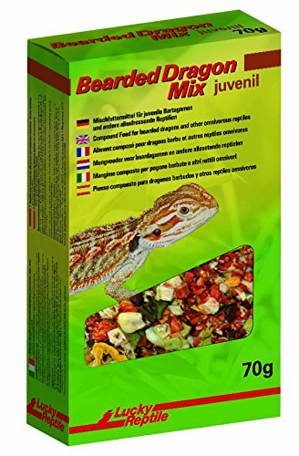 Lucky Reptile Bearded Dragon Mix Juvenil, 1er Pack (1 x 70 g)
