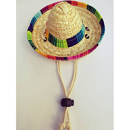 DAYOLY Dogs Sombrero Hat Cap Pet Dogs Sun Hat Party Hats for Dogs Mexican  Style Hat for Dogs and Cats Straw Hat Funny Dog Costume – DogBaby – an  Oliver ... 01e200ee914