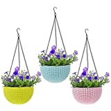 Oshi Greens Hanging Flower Pot Basket with Hook Chain (Assorted Colour) - Pack of 2