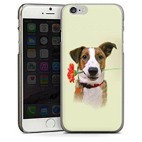 Apple iPhone 4 Housse Étui Silicone Coque Protection Chien Fleur Fleur CasDur anthracite clair